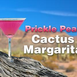 Featured – Prickle Pear Cactus Margarita – 1 Case